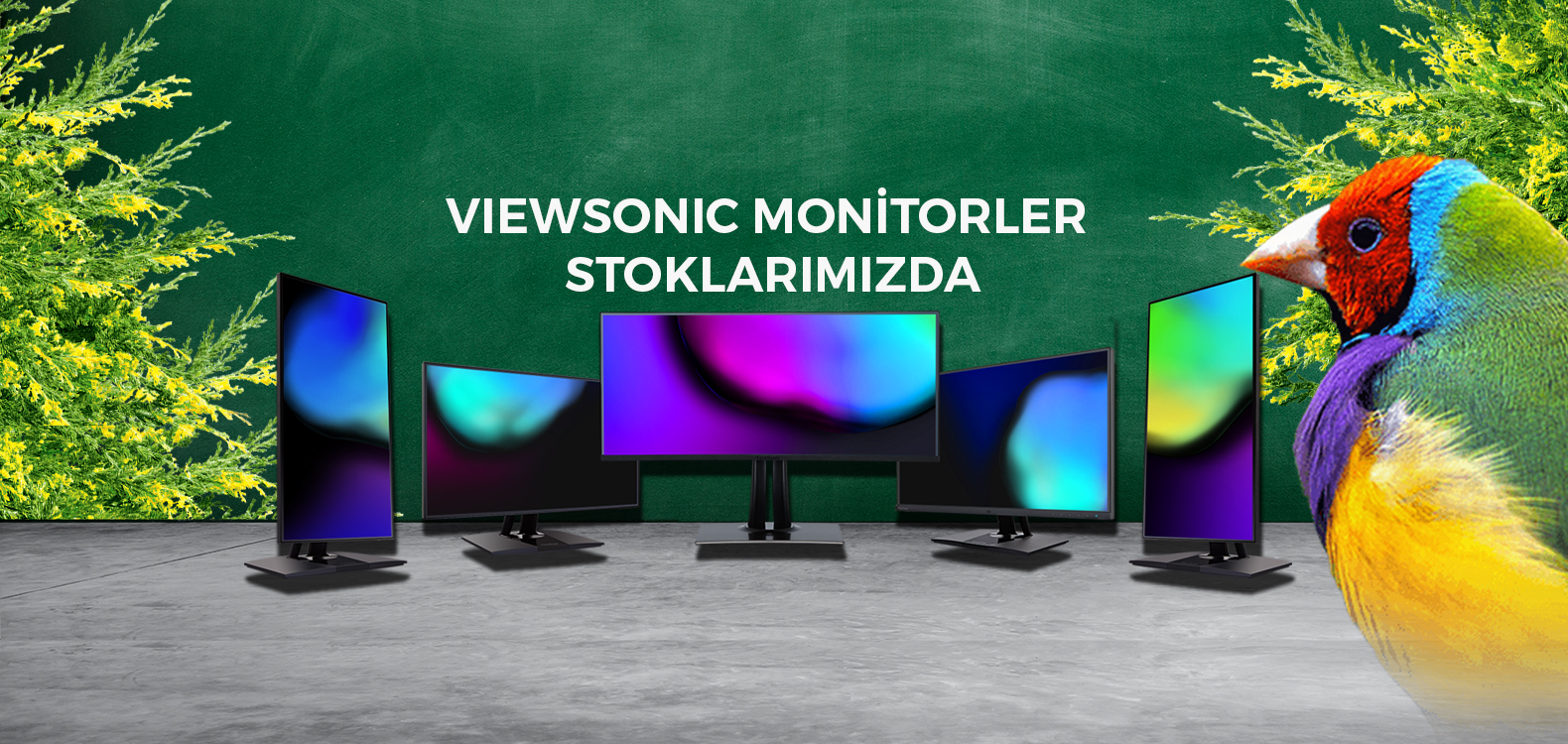 Viewsonic Monitorler